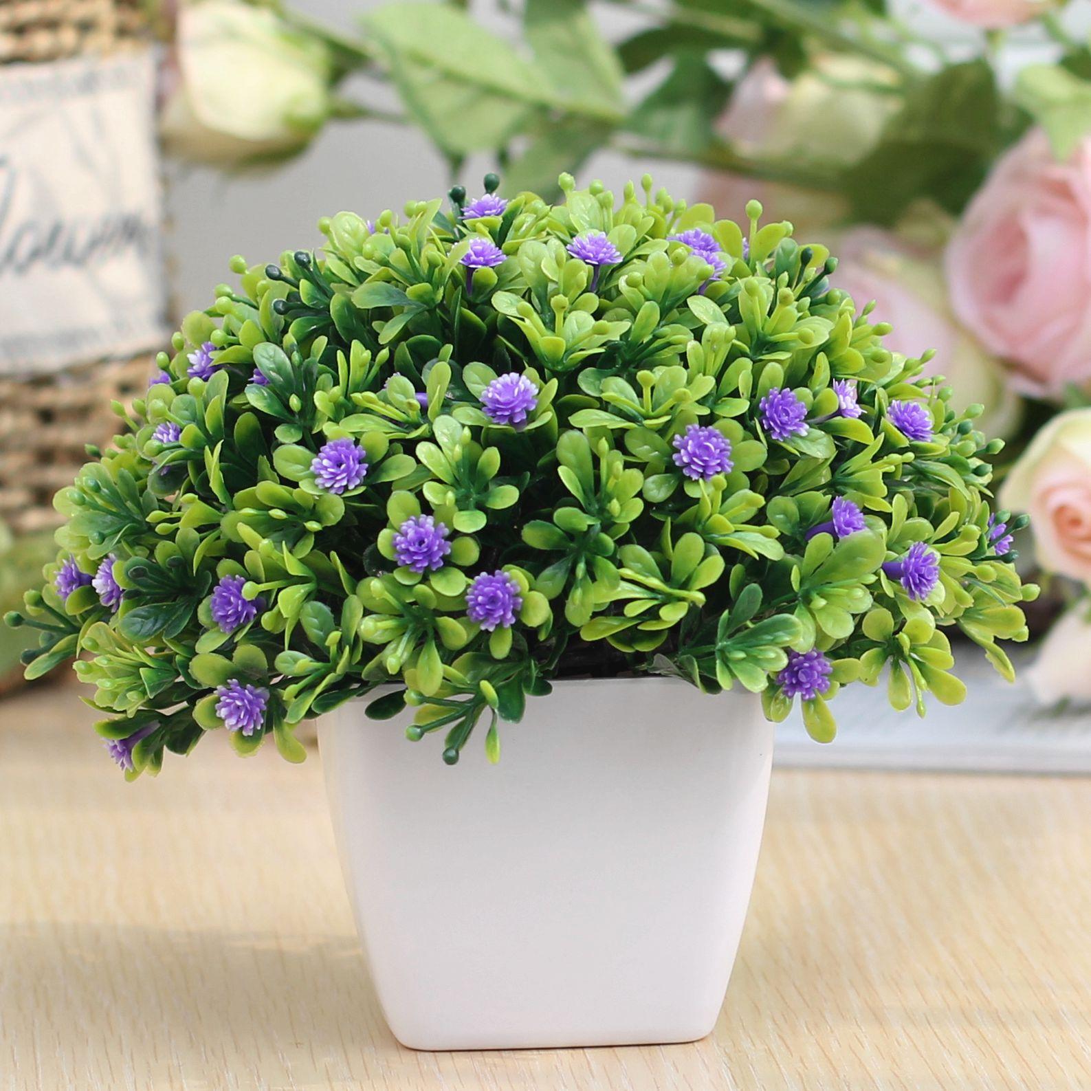 Цвет: Перл-лиловый цвет цветки.