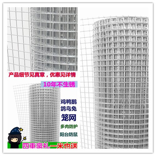 Hot-dip galvanizing electric welding net home protection fence net protection net protection net of chicken duck iron wire mesh