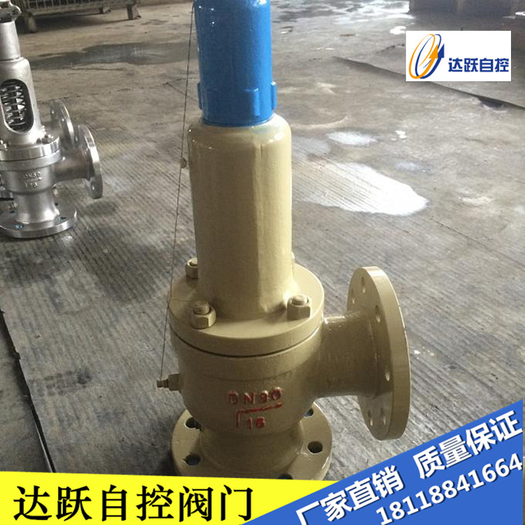 China's genuine A48Y-16C/25 flange cast steel spring full lift safety valve DN100