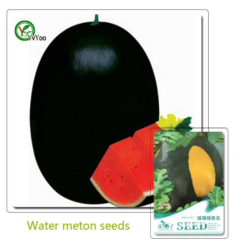 Water melon Seeds Nutritious and Delicious Fruit Seeds DIY H