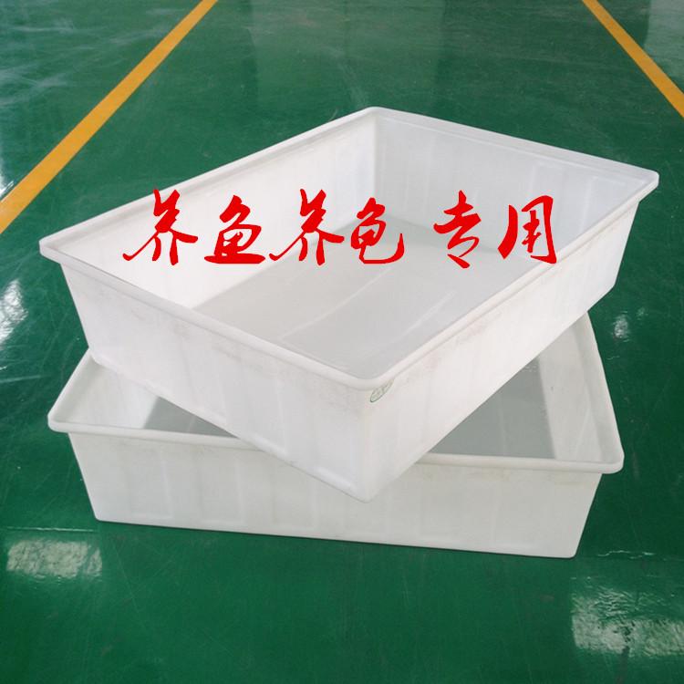 Dichotomanthes yanggui plastic basin fish breeding box plastic water tank thickened rectangular plastic square basin water storage tank of aquatic products