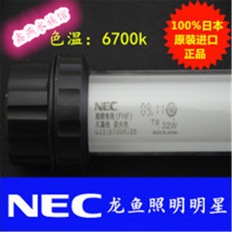 Importado do japão 6700k30w NEC lâmpada por lâmpada especial para peixes - dragão de cor RGB lâmpada T8 o anfíbio