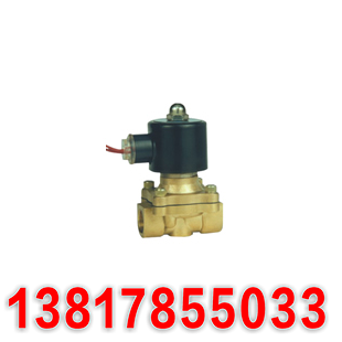 2W0-ZS in a direct acting solenoid valve valve