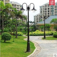 Special double head, three heads, 4 heads, 5 meters, 3 meters, Chinese lights, courtyard lights, LED grass lights, parks, streets, residential street lamps
