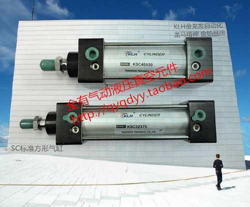 Ad alta temperatura Standard di Cilindro con Piazza SC63X295-S/SC63*295-S/SC63-295-S magnetica.