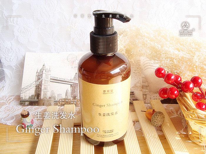 La extracción de este champú acondicionador de pelo / Ginger / cuero cabelludo caspa aceite para el cabello / aminoácidos sin silicona