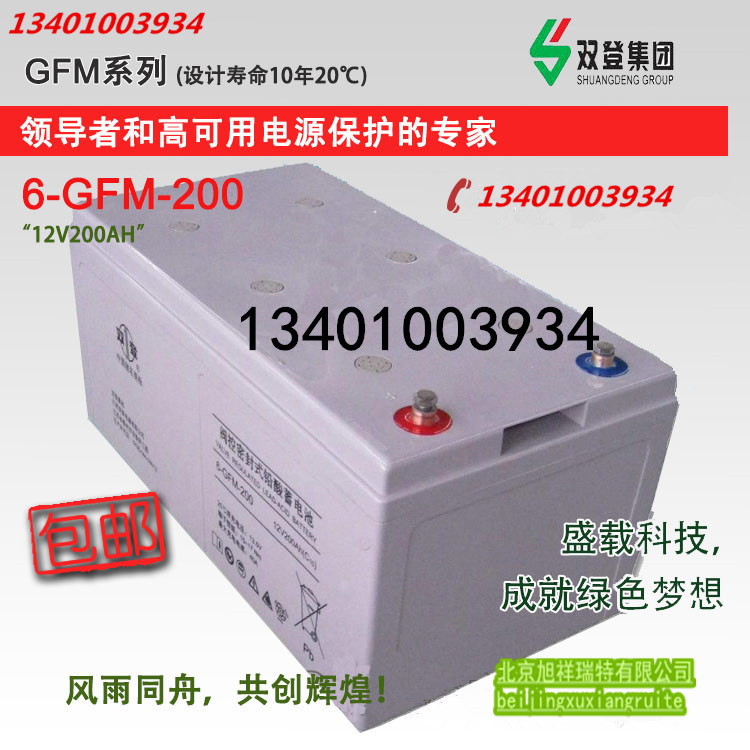 Dual 6GFM-200/12V200AH maintenance free storage battery warranty for three years for UPS\EPS DC screen