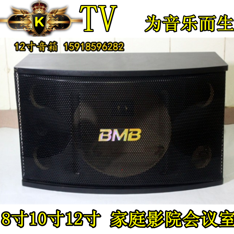 Promotion 8 inch 10 inch 12 inch KTV room conference room family Cara OK hanging passive sound box