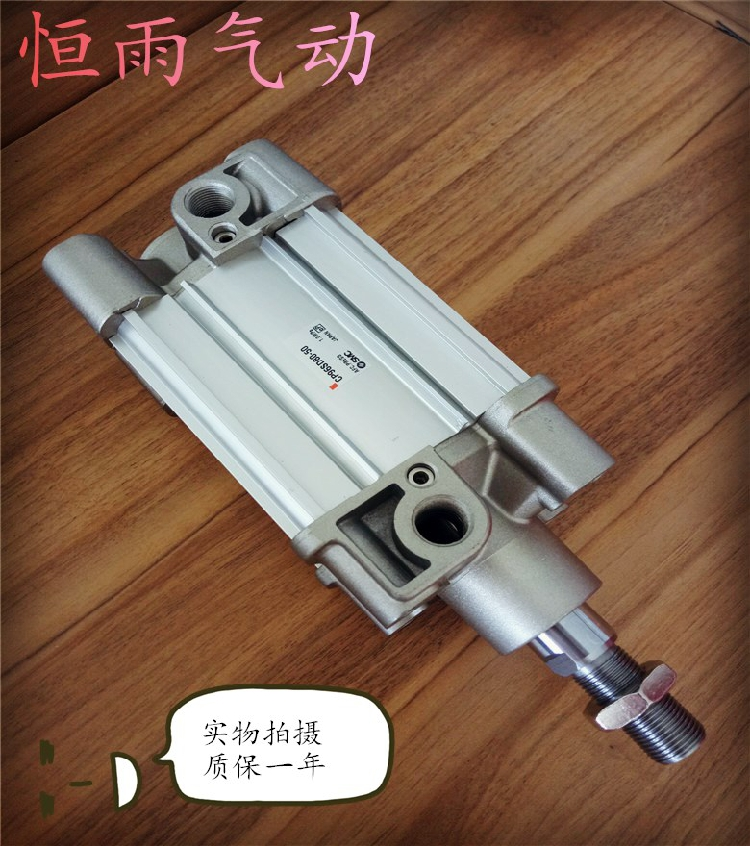 CP96SB63/CP9SDB63-255075100125150160175 cax standardnih valj