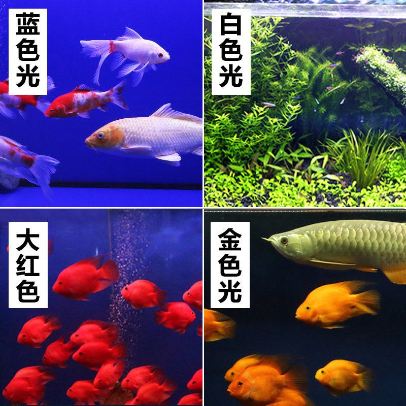 Sensen aquarium special T8LED three color waterproof dragon aquarium aquarium landscape lamp grass cylinder LED lamp