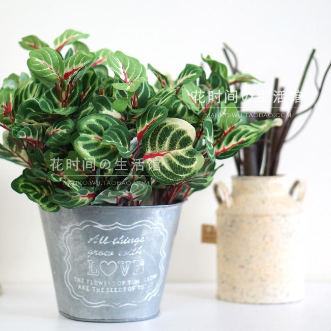 單枝植物不含盆仿真植物 假綠植墻制作材料 仿真葉子 辦公室家居軟裝飾品 洋莧葉