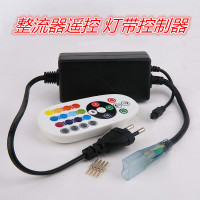 Led remote control high voltage colorful lamp with remote controller single row flat plug 220V lamp belt controller