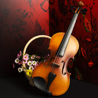 Violin children adult beginners entry to practice the violin grading instrument for children beginners basswood