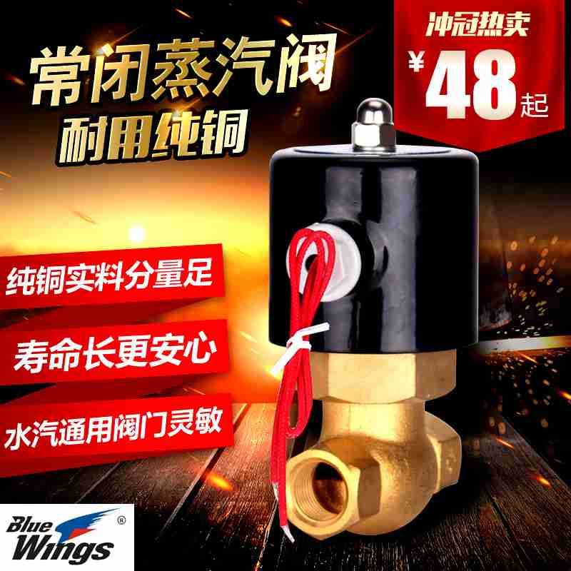 New shthde copper steam valve, high temperature steam solenoid valve, steam pipe electric control valve 220