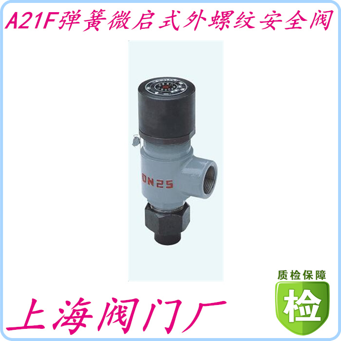 Shanghai valve factory of A21F-25C spring Weiqi thread safety valve DN10152025