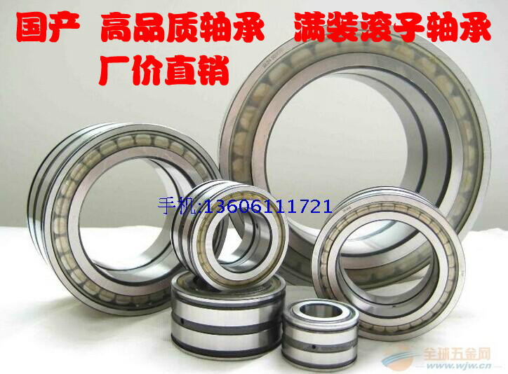 SL04-5030PP guarantee quality of full loaded roller bearing cylindrical roller bearing in Changzhou bearing plant