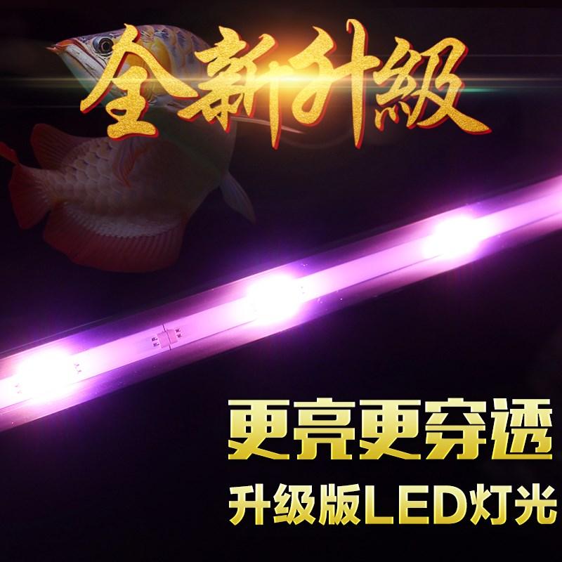 หลอด LED หลอดไฟตู้ปลาอโรวาน่าขาวหลอดเลือดแดงนกแก้วสามารถติดตั้งโคมไฟพิเศษ