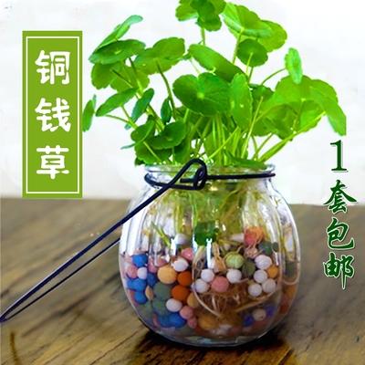 小白桃淘福利,淘宝天猫白菜特价值得买商品福利汇总!
