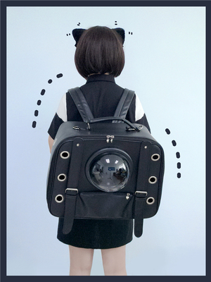 taobao agent 【To Alice】P47118 Original Cat Pet Bag Going Out Portable 2ways Backpack