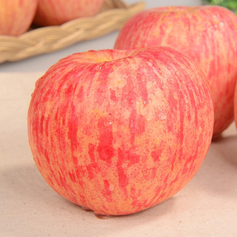 山东烟台栖霞红富士苹果5斤优惠价3元销量9371件