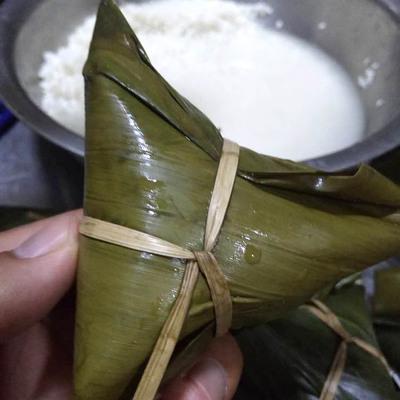 新鲜纯天然粽叶干粽子叶
