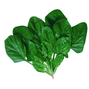 【蔬菜种子】四季播种农家家庭院田园阳台