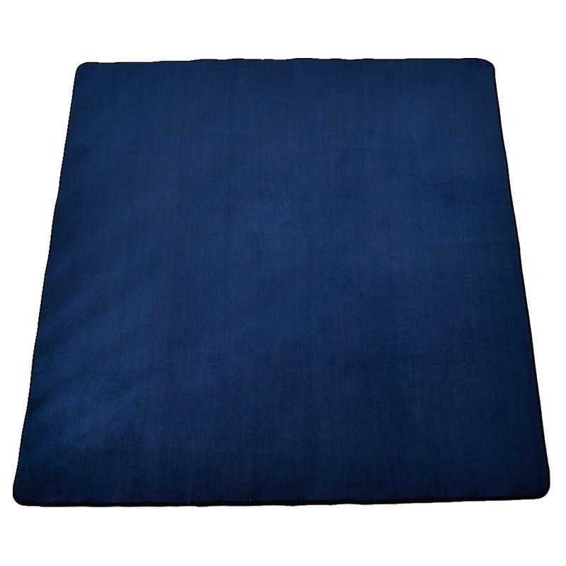 地毯卧室房间家用垫子满铺可爱女生可睡毯
