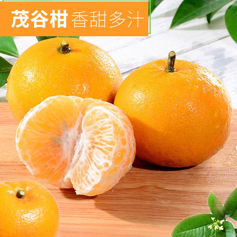 【桂洁农业】广西新鲜水果茂...